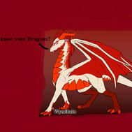 How well do you know your Dragons?